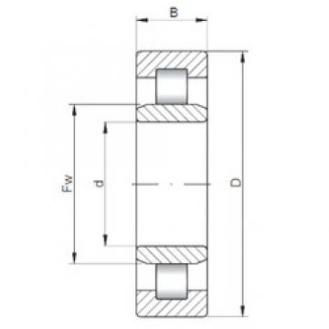 50 mm x 110 mm x 27 mm  ISO NU310 cylindrical roller bearings
